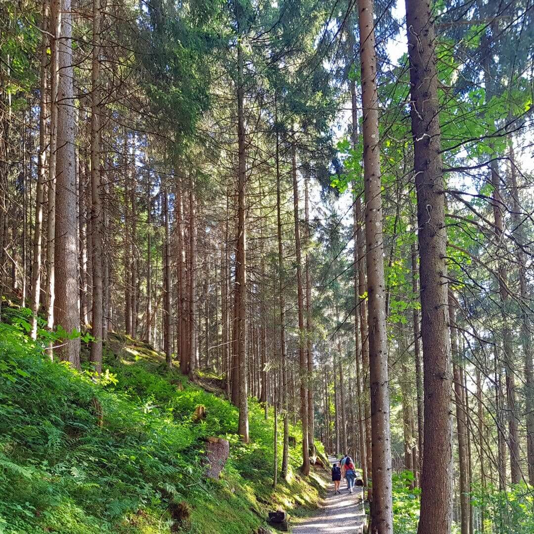The benfits of spending time in nature